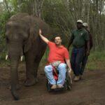 7-elephant