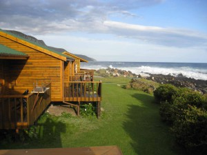Tsitsikamma-forest---Storms-river-camp-(6)